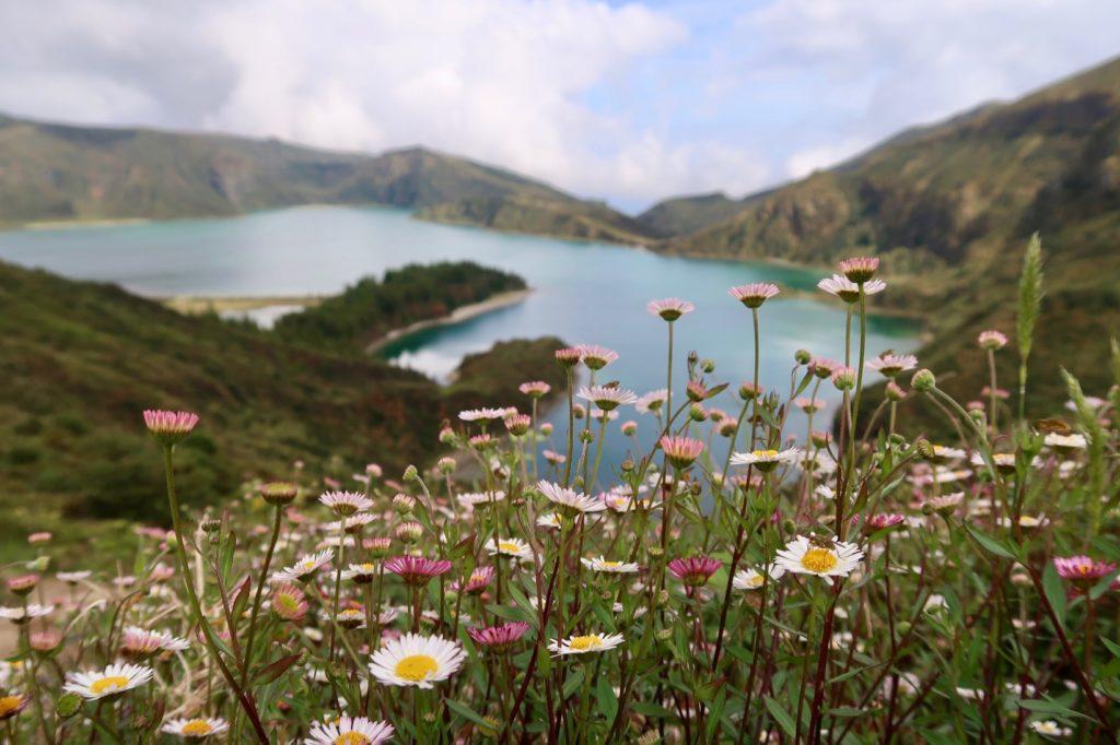 Vakantie boeken naar Azoren